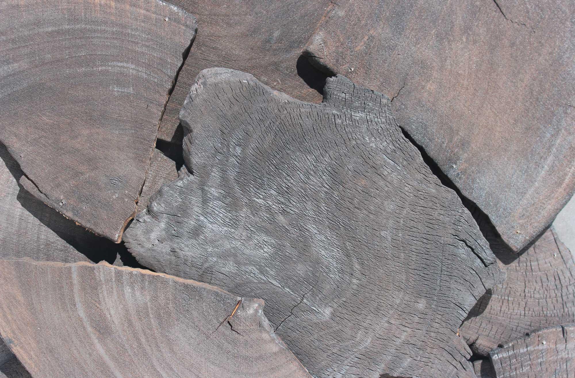 wandpaneele-holz-eukalyptus-verkohlt-eukalyptus-bits
