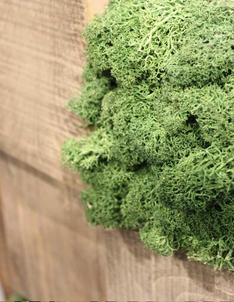 wandpaneele-mix-kastanie-recycelt-moos-gruene-lunge
