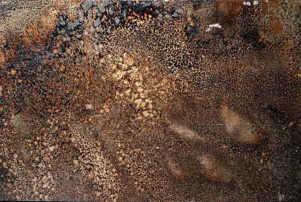 wandpaneele-metall-zink-abgeflammt-bio-mystic