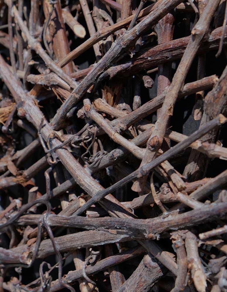 eco-wandpaneele-aeste-von-weinrebe-verklebt-wood-odyssee-Seitlich