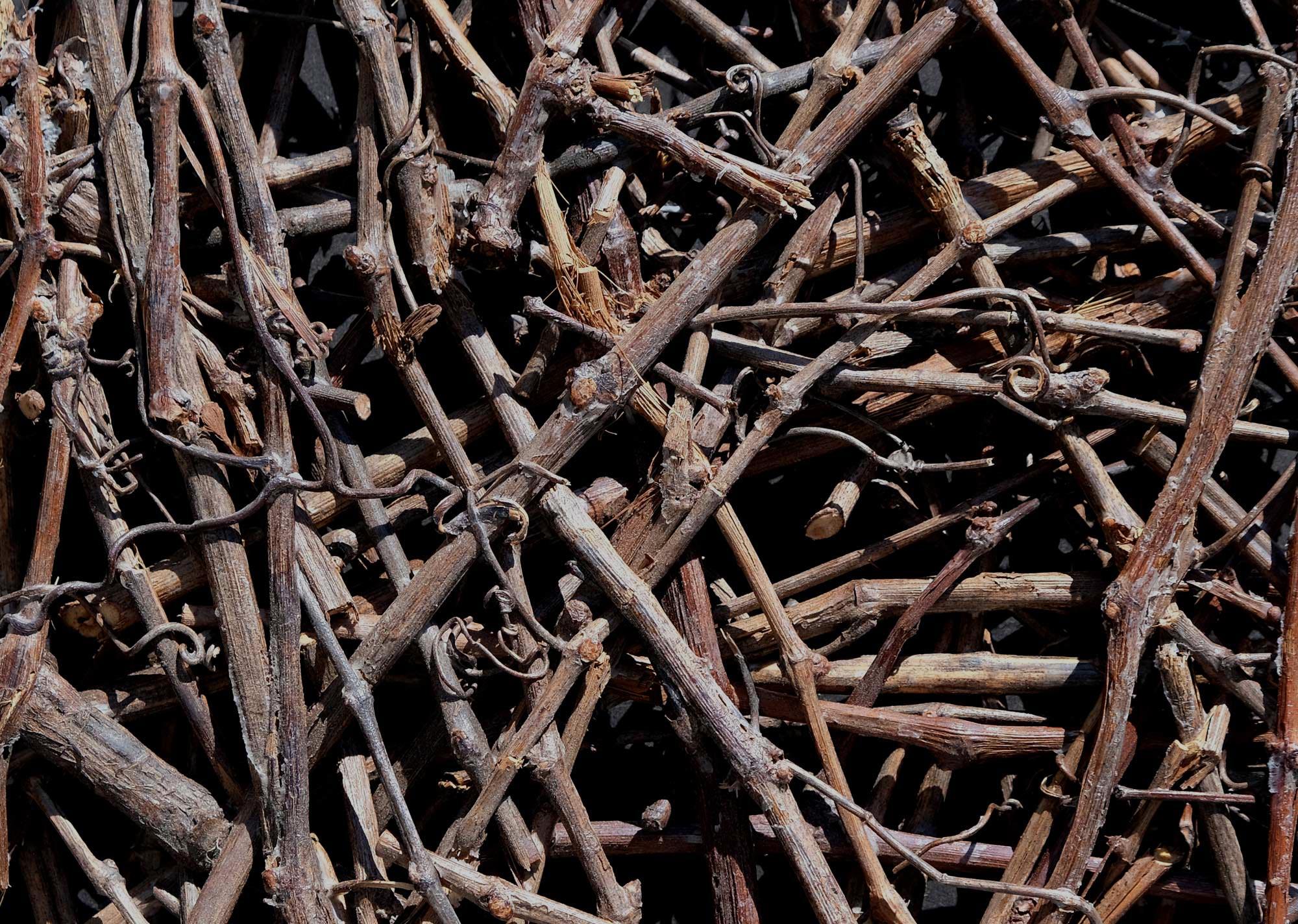 eco-wandpaneele-aeste-von-weinrebe-verklebt-wood-odyssee