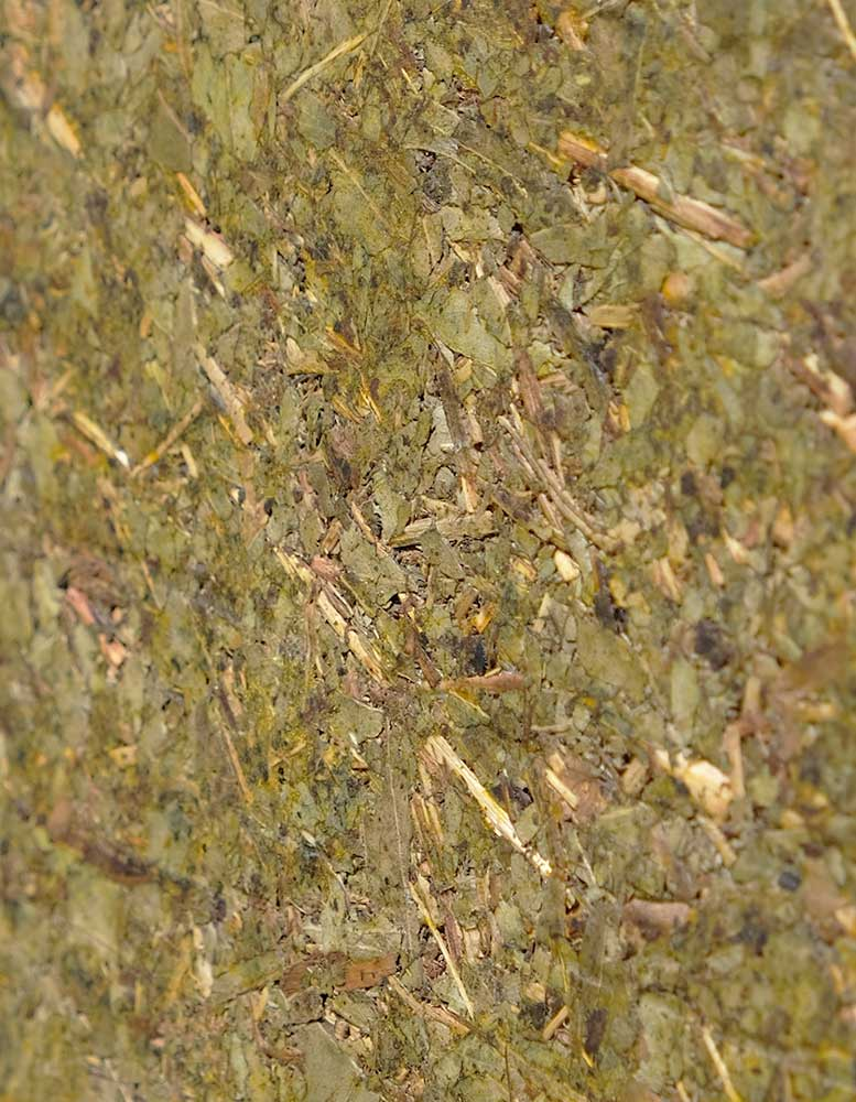 wandpaneele-mix-eukalyptus-gepresst-koala-green-Seitlich