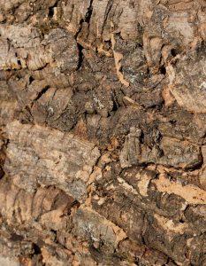 wandpaneele-kork-gruen-braun-naturfarben-macho-bark-s