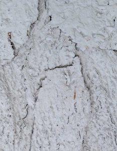wandpaneele-kork-weiss-lackiert-cream-dream-s