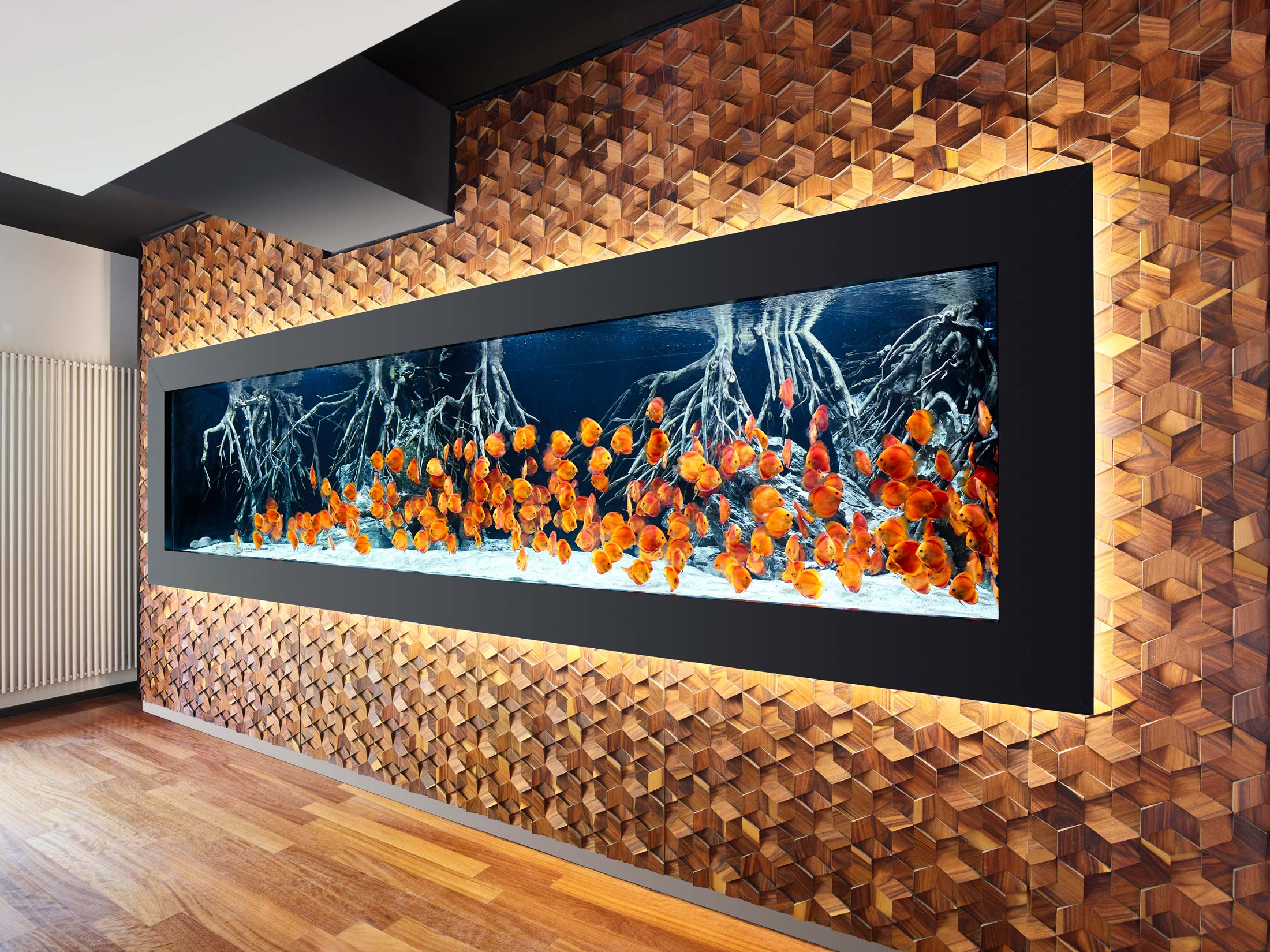 impressionen-wandgestaltung-the-age-of-aquarium-1