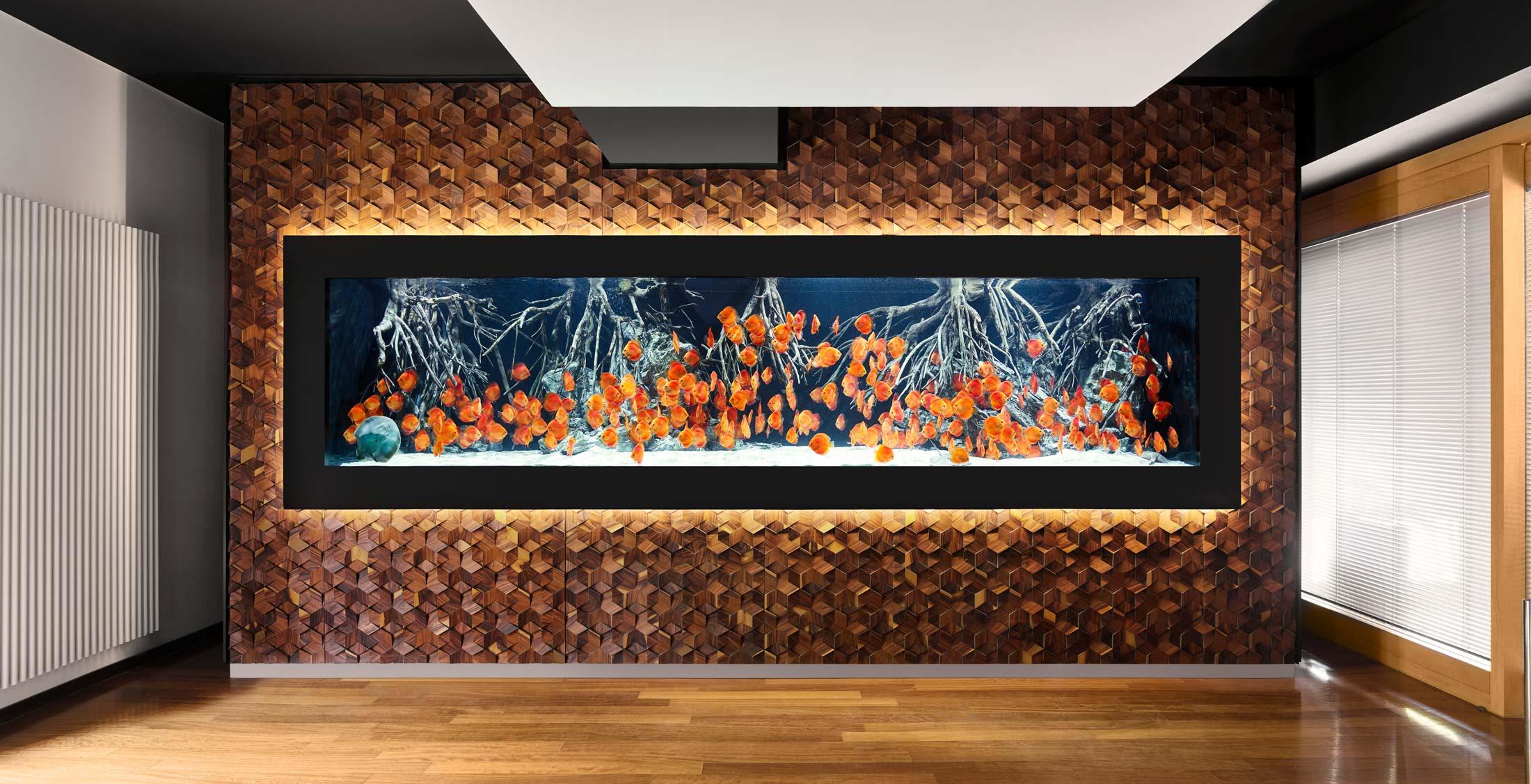 impressionen-wandgestaltung-the-age-of-aquarium-4