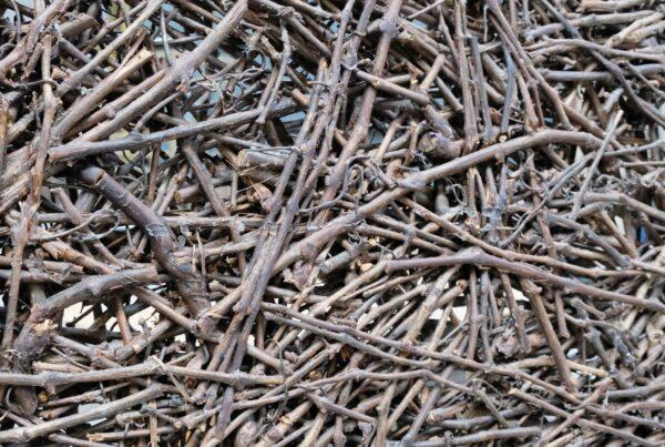 trennwand-aeste-aus-weinrebe-verklebt-wood-odyssee