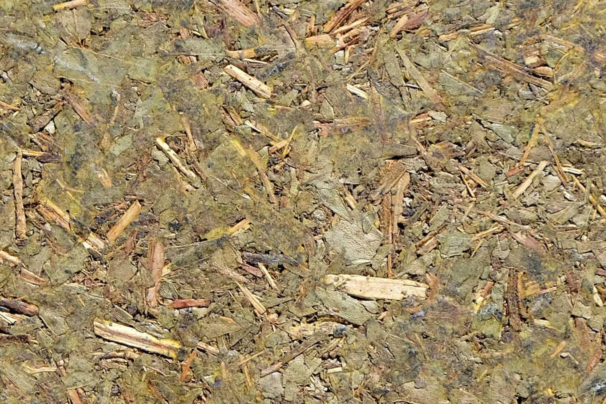 wandpaneele-mix-eukalyptus-gepresst-koala-green-l
